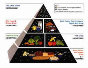 USDA Food Pyramid paleolithic diet paleo