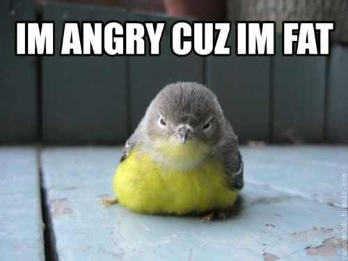 angry cause I'm fat