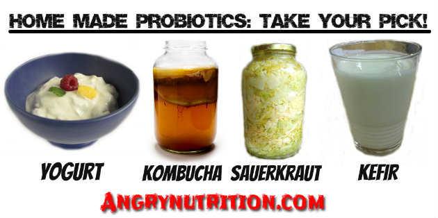 home made probiotics yogurt and kefir